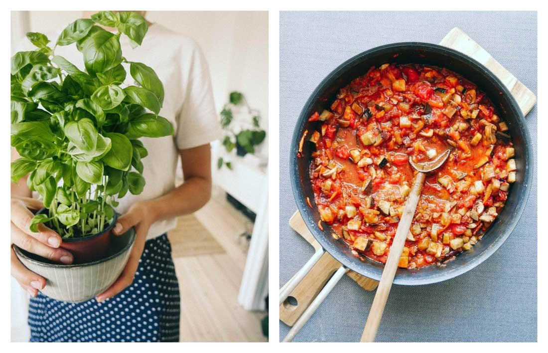 kødsovs med grøntsager og basilikum